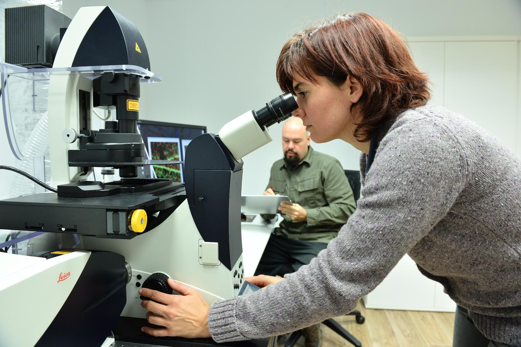 achucarro_microscopio.jpg