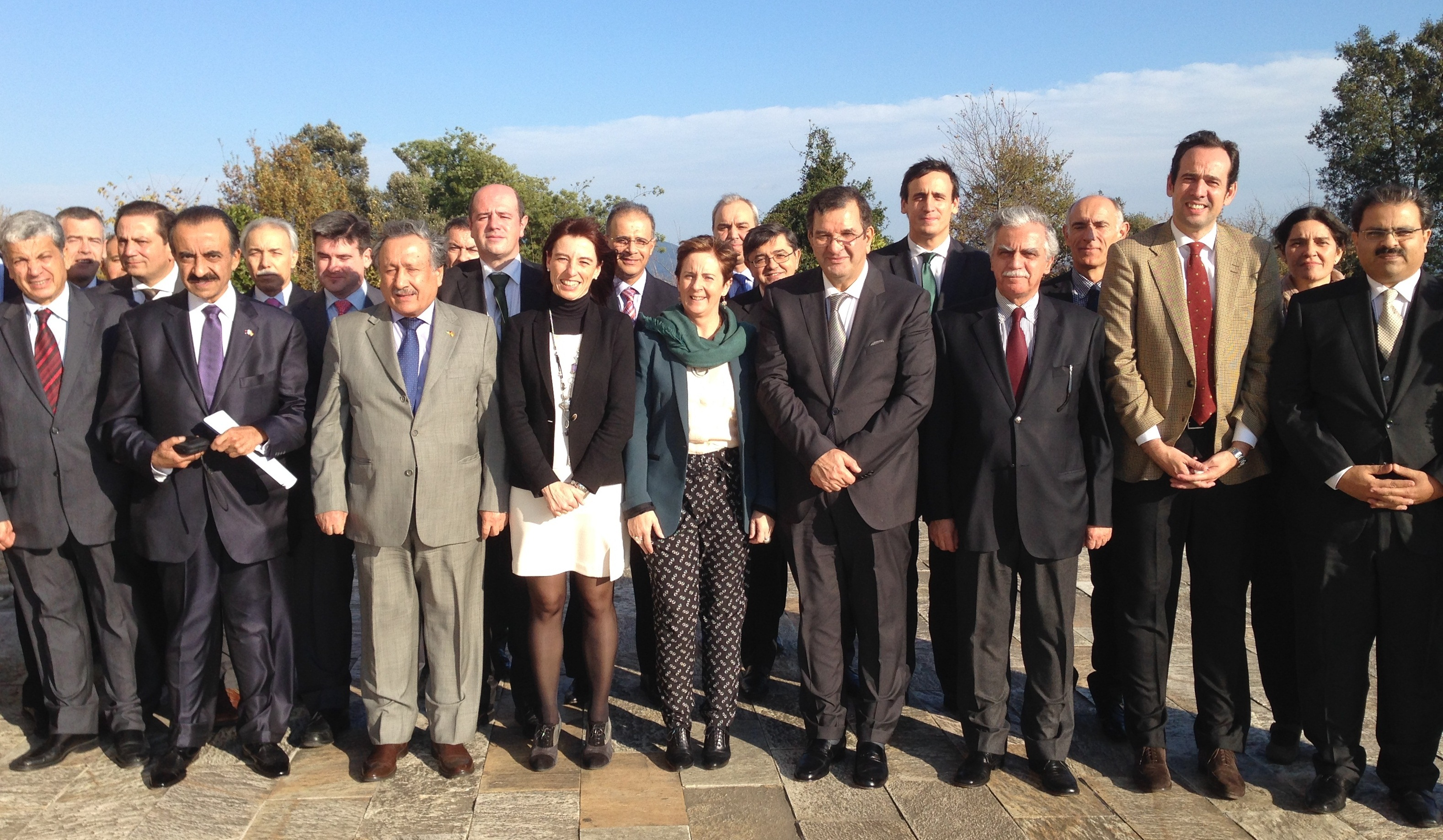 DDEC_Consejo_Liga_Arabe.jpg