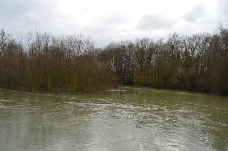 Rio Zadorra a la altura de Gamarra