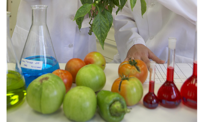 Tomate tradizionalen eskaria gero eta handiagoa da, eta ezin da beti ase.