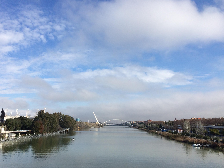 Campo_de_Regatas_Sevilla.jpg