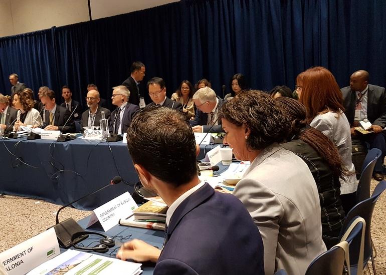 La viceconsejera, Elena Moreno, en primer término, durante la sesión con representantes regionales