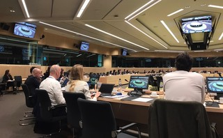 The European Commission announces to the EPSCO group that it will present a Strategy to address gender violence, economic independence and access to the women's labor market